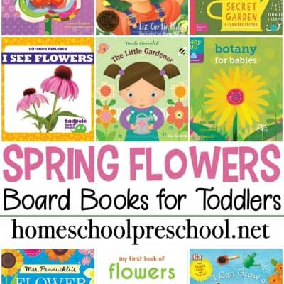 Books About Flowers for Toddlers