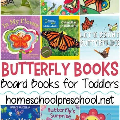 Butterfly Books for Toddlers