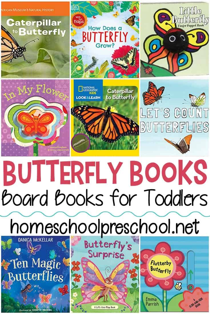 Butterfly books for toddlers! Board books that toddlers can hold and manipulate as they learn about caterpillars and butterflies!