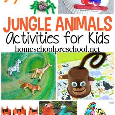 Jungle Animal Activities