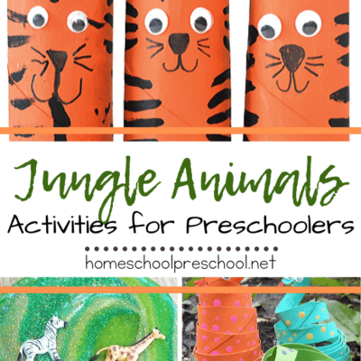 Jungle Animal Activities
