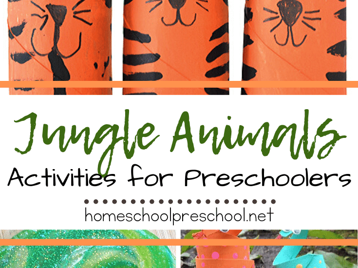 These jungle animal activities will help you teach your preschoolers about the animals, bugs, and creatures that live in the jungle.