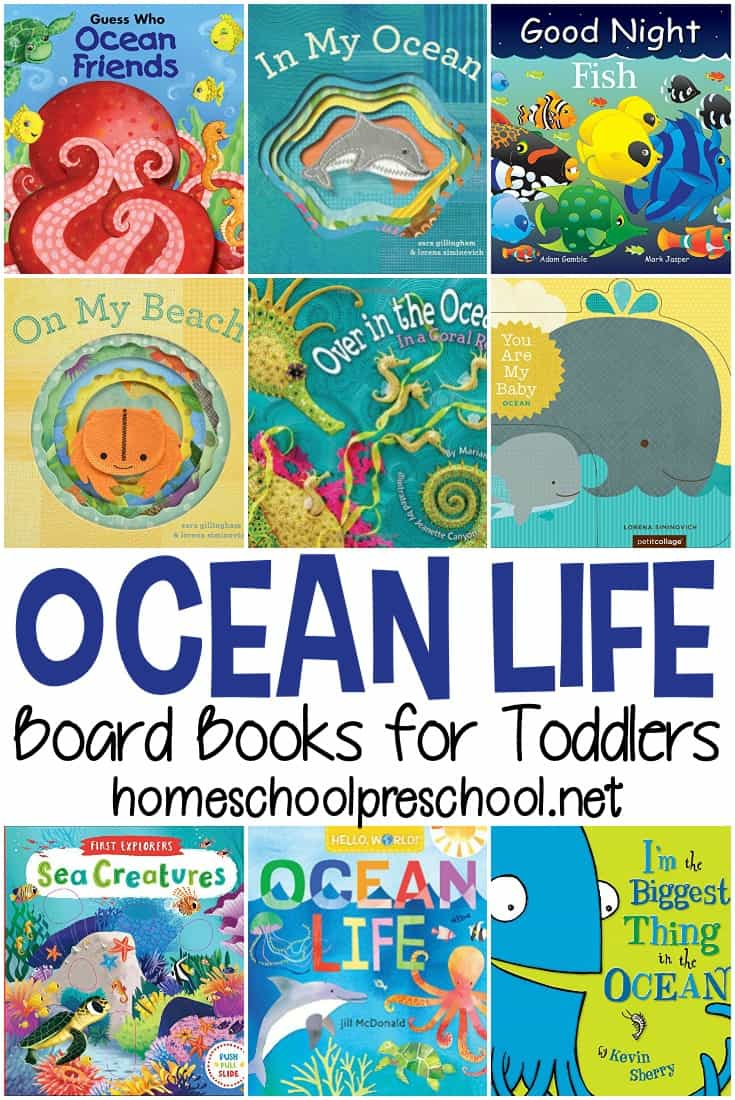 Fill your book basket with ocean books for toddlers. These board books will help you introduce your little ones to the ocean and the animals that live in it.