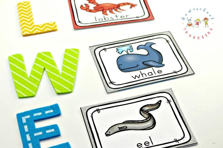 Preschoolers will have fun using these free printable ocean animals flashcards to learn the names of more than 20 ocean animals!