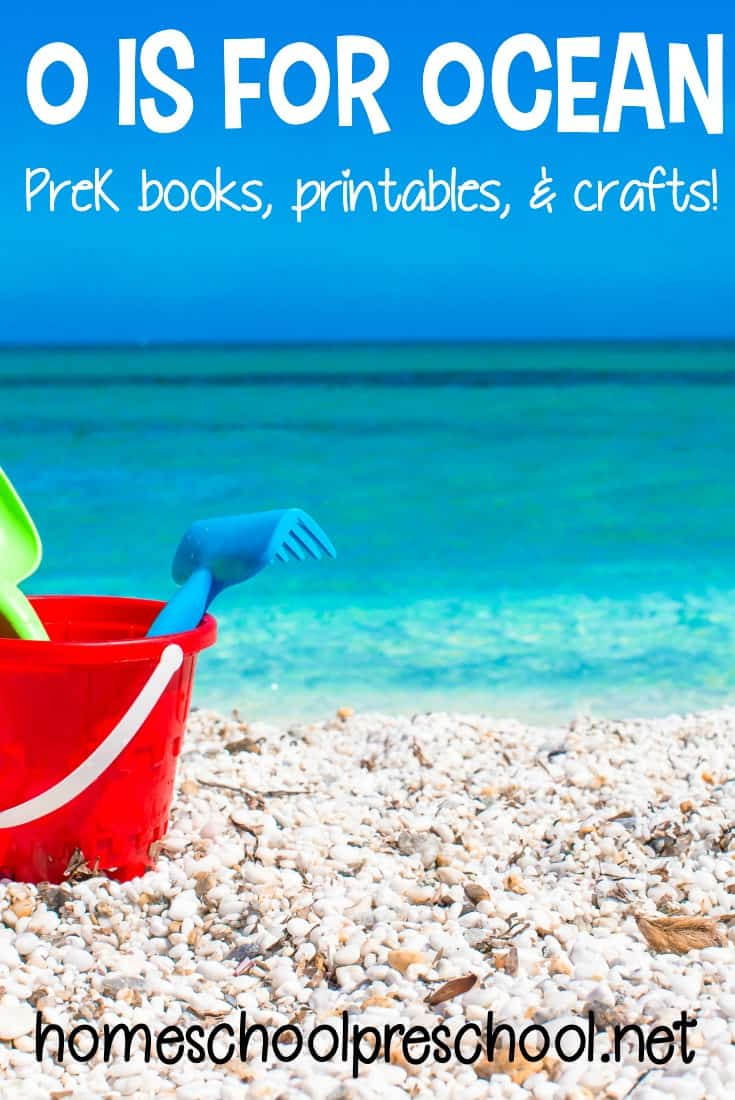 Summertime means beach time. Whether you're heading to the beach or just learning about it, these are the best activities for your preschool ocean theme.