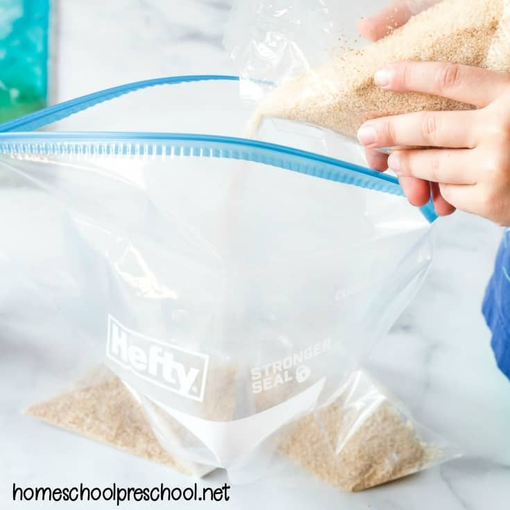 Make an ocean sensory bag for your toddlers and preschoolers to explore. It's a great activity for summer fun before or after a tip to the beach!