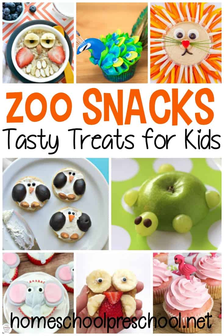 Whether you're gearing up for a trip to the zoo or just looking for something fun to do, whip up one of these zoo snacks for preschoolers for a fun treat!