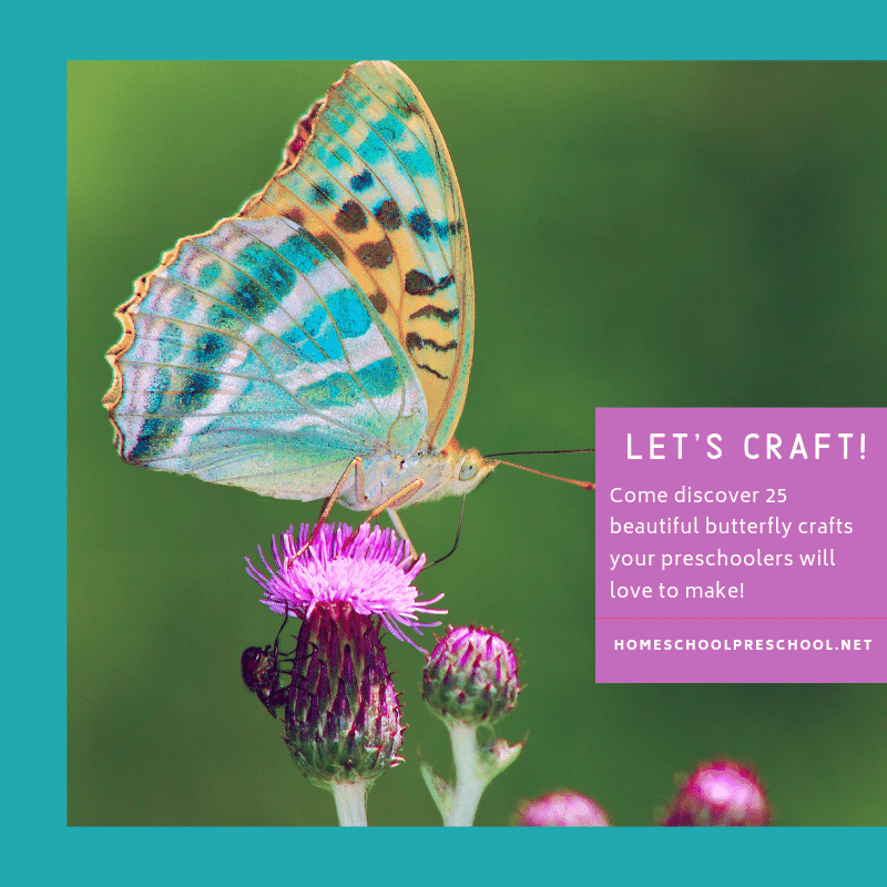 Butterfly crafts for preschoolers are perfect for spring and summer afternoons. Kids will love all 25 of these creative ideas.