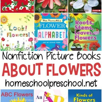 Nonfiction Books About Flowers for Preschoolers