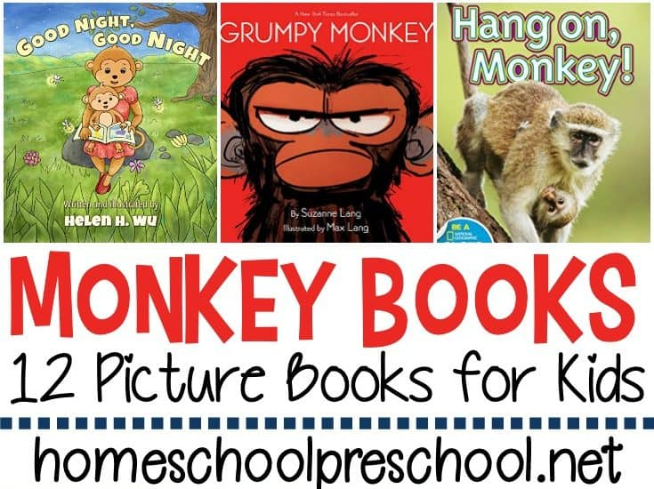 What a great collection of monkey books for preschool! It includes both fiction and nonfiction books for your upcoming animal studies!