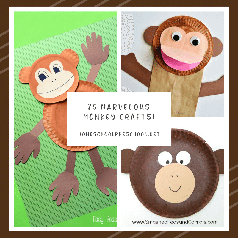 Don't miss these marvelous monkey crafts for preschoolers! Preschoolers can make paper plate crafts, finger puppets and so much more!