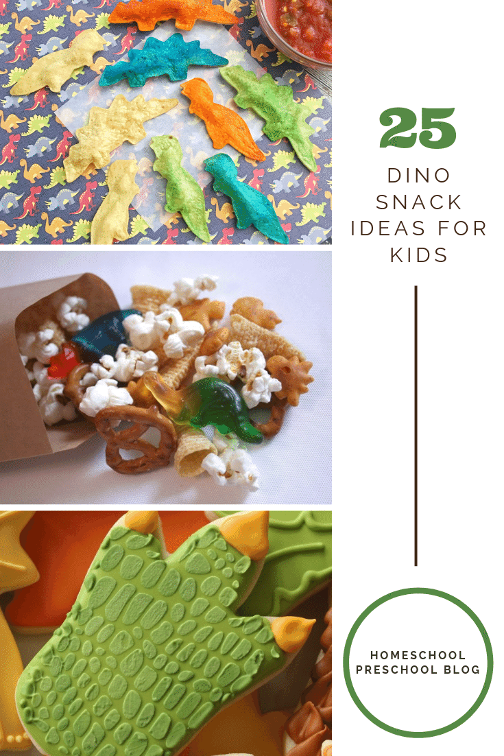 Create one or more of these dinosaur snack ideas for your dinosaur theme. During your dinosaur studies or a dinosaur party, your kids will love these ideas.