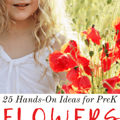 Hands On Flower Activities for Preschoolers