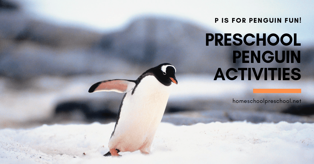 Penguin preschool activities are perfect for your winter! Find crafts, printables, book lists, and much more! Each activity is perfect for preschoolers!