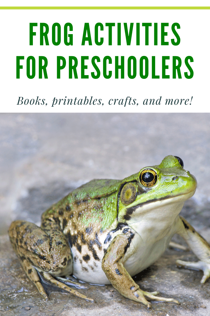 Fabulous frog activities for preschool! Find crafts, printables, book lists, and more. Hop on over to discover them all!