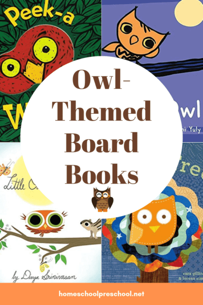 This fall, introduce your toddlers to owls with these owl board books for toddlers. The sturdy pages make these books perfect for little hands.