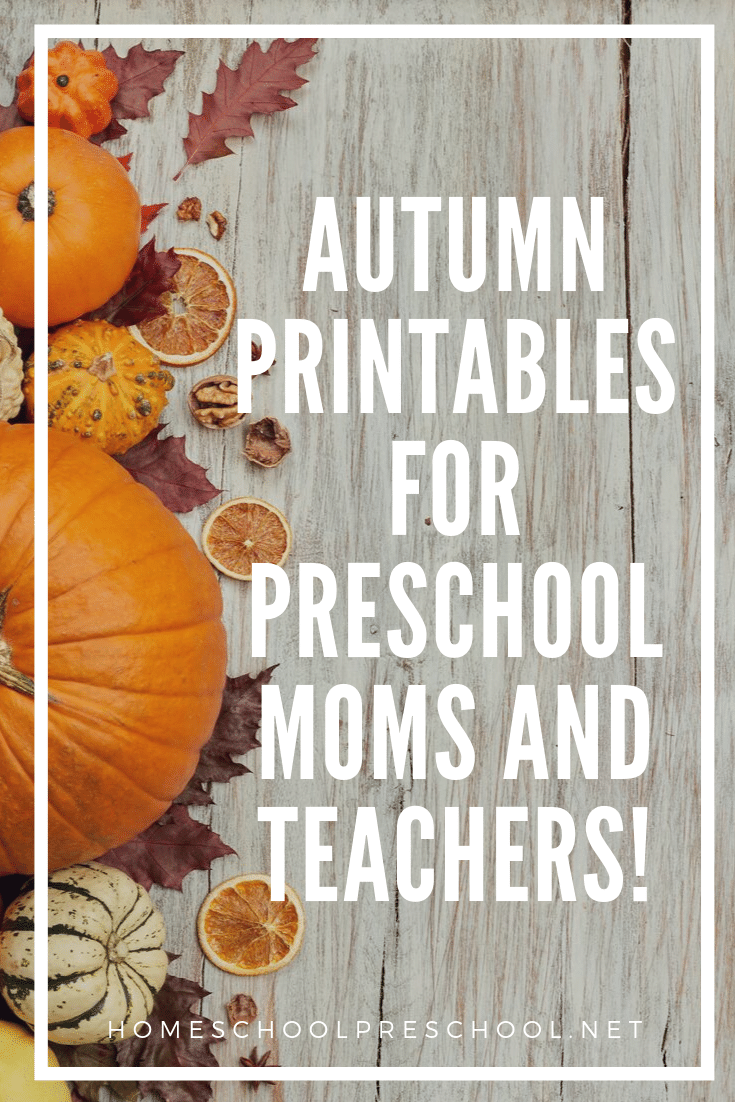 Looking for something fun to do with your preschoolers? These free autumn printables for preschool are just what you need to teach your little ones this fall.