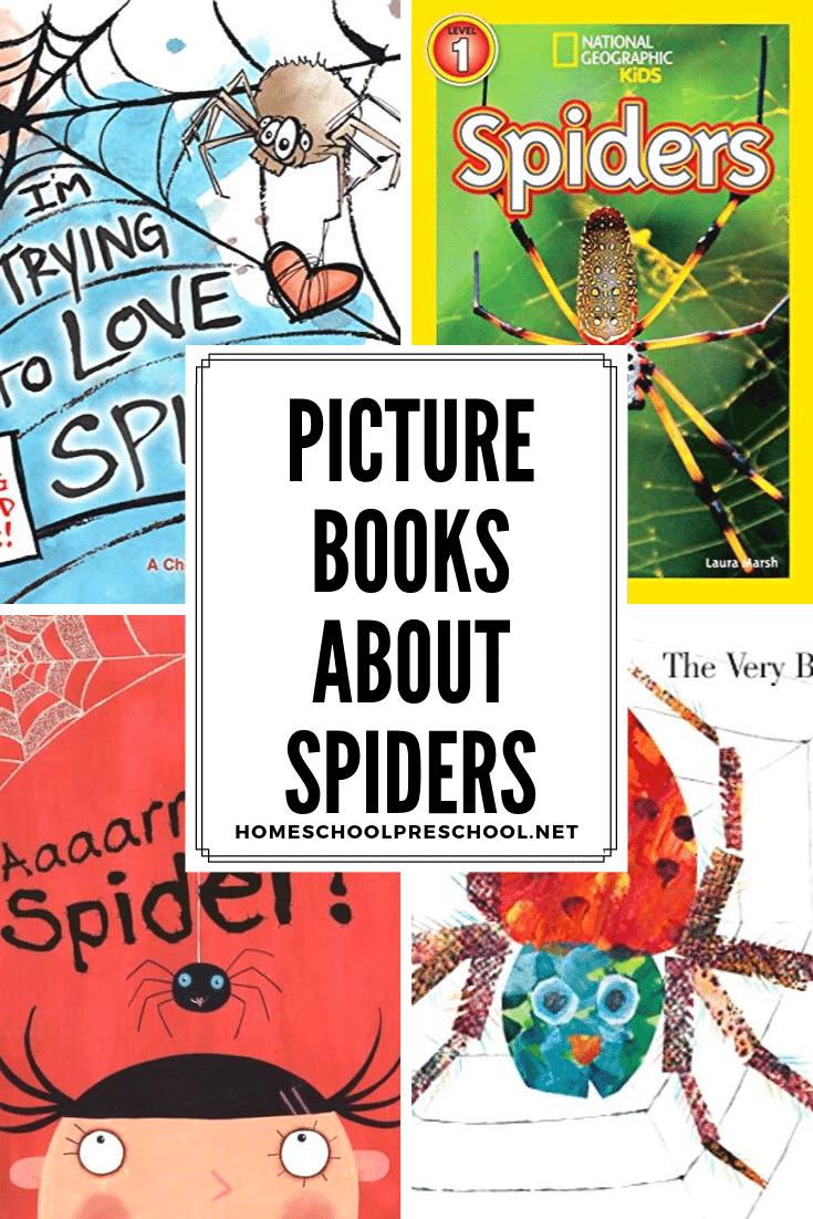 If you're studying spiders or looking for some fun books to read this Halloween, try these spider books for preschoolers. They're great for young readers.