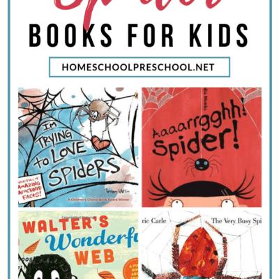Spider Books for Preschoolers