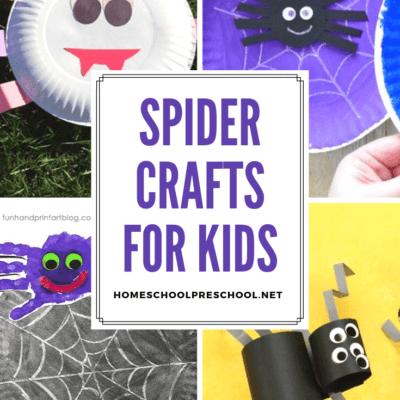 Spider Crafts for Preschoolers
