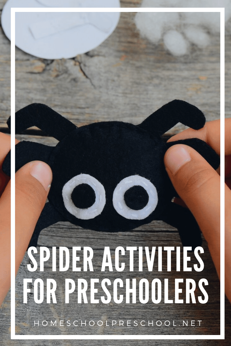 Spectacular spider activities for preschoolers! Find crafts, printables, book lists, and more. Crawl on over to discover them all!