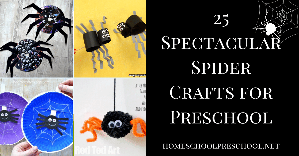 Whether you're studying spiders in your preschool or you're looking for a Halloween craft, don't miss these creative spider crafts for preschoolers!