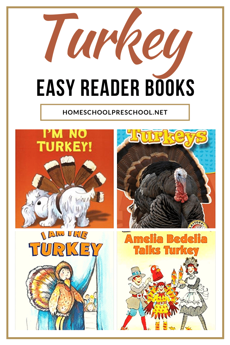 Don't miss the terrific collection of turkey books for kindergarten! These easy readers are sure to engage and excited your young readers this fall.
