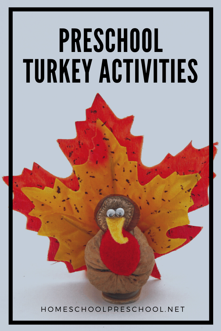 Terrific preschool turkey activities! Find crafts, printables, book lists, and more. Strut on over to discover them all!