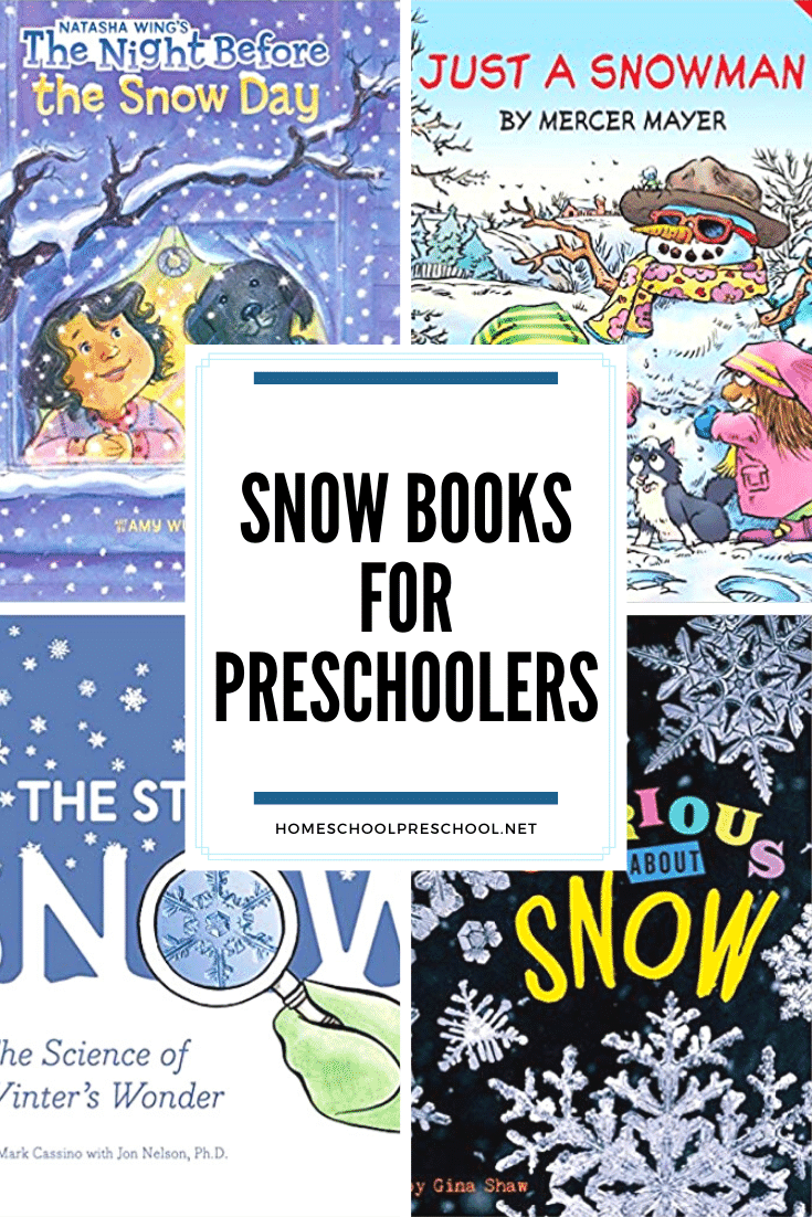 Add these snow books for preschoolers to your winter reading list. You'll find a mix of both fiction and nonfiction books on this awesome list.