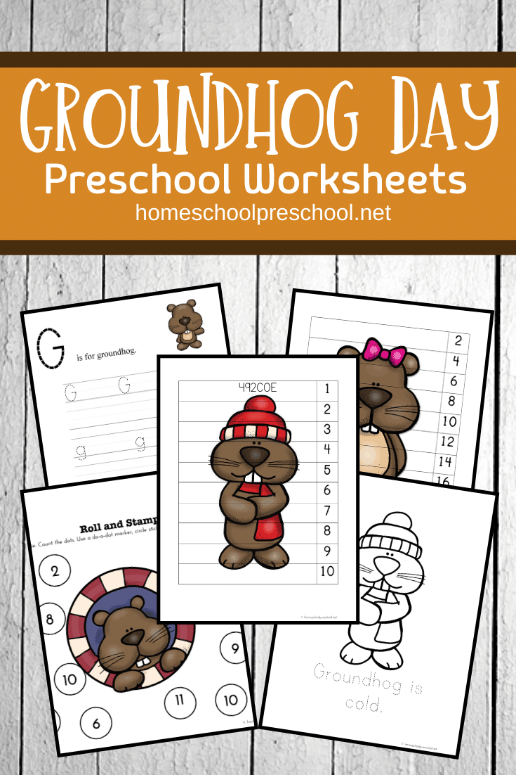 February 2nd isGroundhog Day!Learn about this unique holiday with ourGroundhog Day worksheets designed for preschoolers!