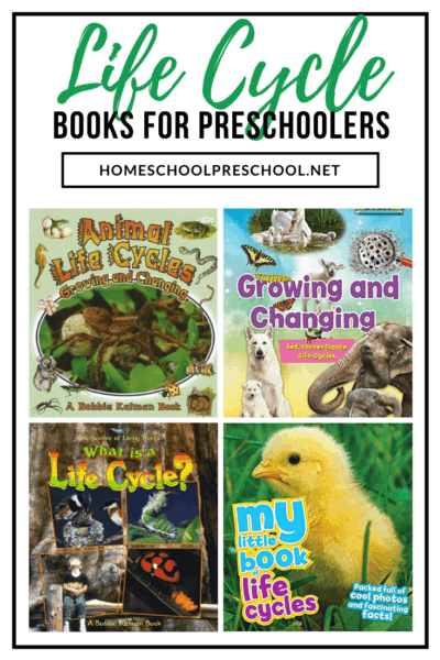 These life cycle books for preschoolers are perfect all year long. They'll help you bring your life cycle lesson plans to life!