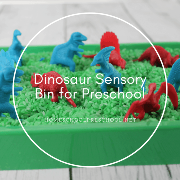 Dinosaur sensory play is perfect for dino lovers of all ages! This sensory bin is super simple to put together!
