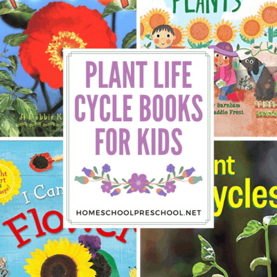 Plant Life Cycle Books for Kids