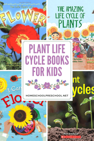 No matter what growing season you're in, these plant life cycle books for kids are a great way to teach kids how plants grow from seed to adult.