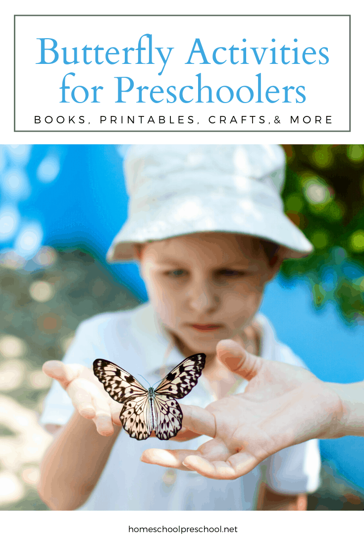 The spring and summer months are the best time to plan butterfly activities for preschoolers. Gather books, make crafts, and teach the life cycle.