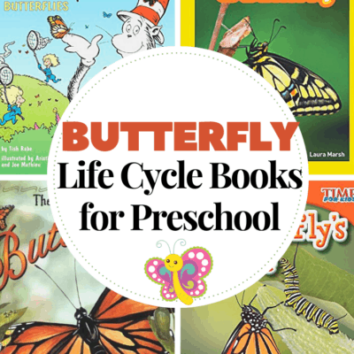 Butterfly Life Cycle Books