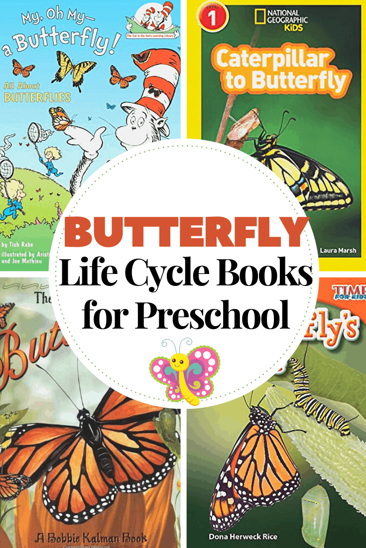 As spring turns into summer, teach your preschoolers about how butterflies grow with these butterfly life cycle books for kids.