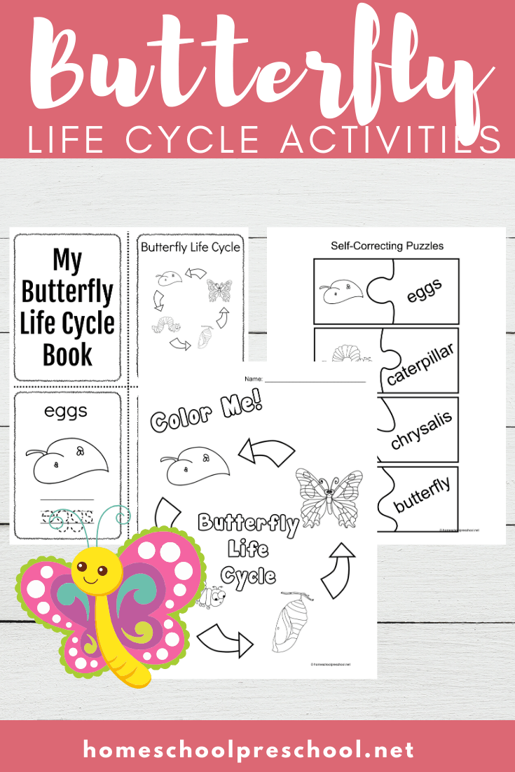 Spring and summer are the best time of year to study butterflies. This printable features activities that focus on life cycle of a butterfly for kids. 16 exciting activities!