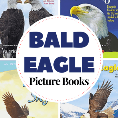 Books About Bald Eagles