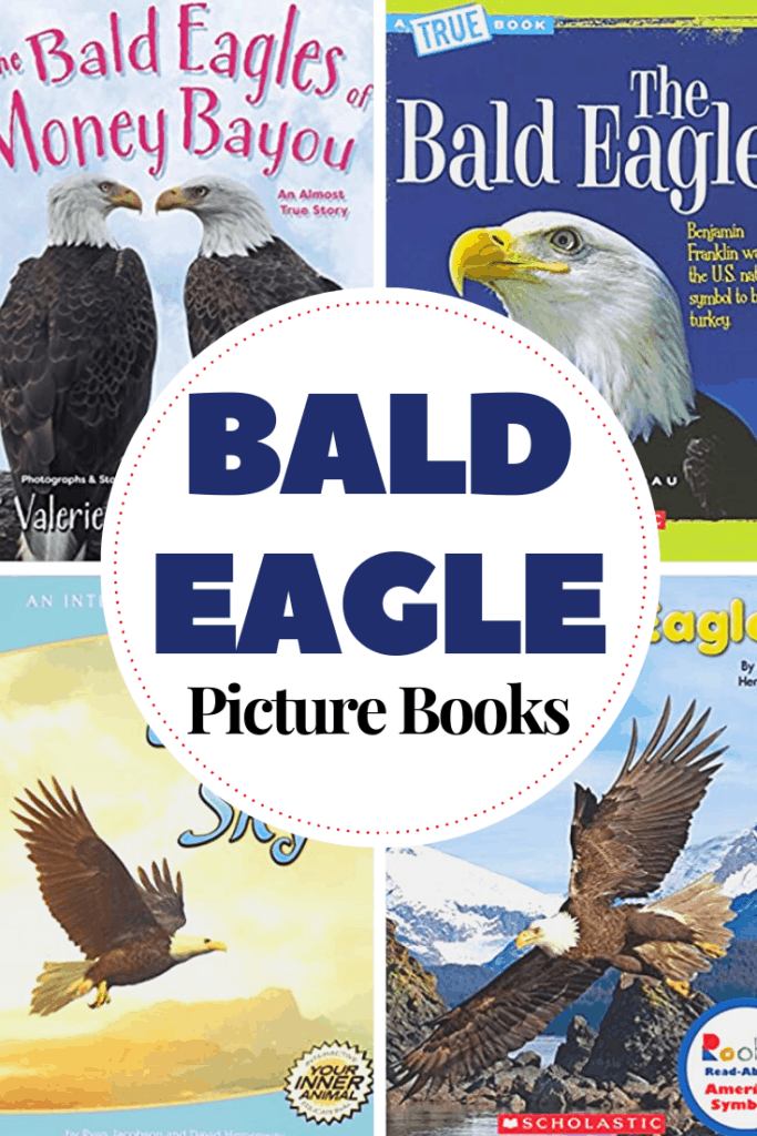 Whether you're adding books about bald eagles to your patriotic activities or your bird studies, this collection of picture books is a great place to start your search!