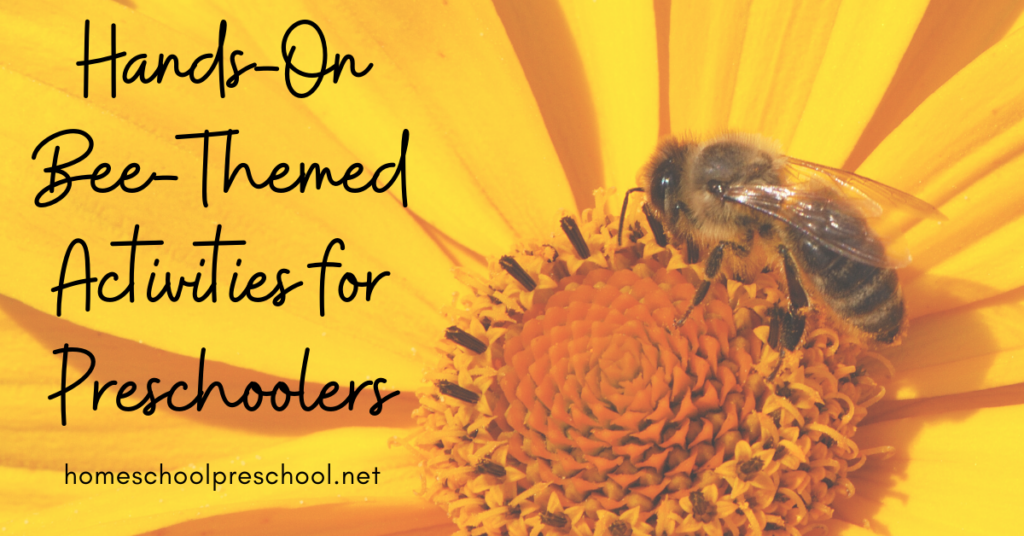 Do you have a preschooler fascinated by bees? They're a fascinating insect to study. So spend a day learning about them with these bee activities!