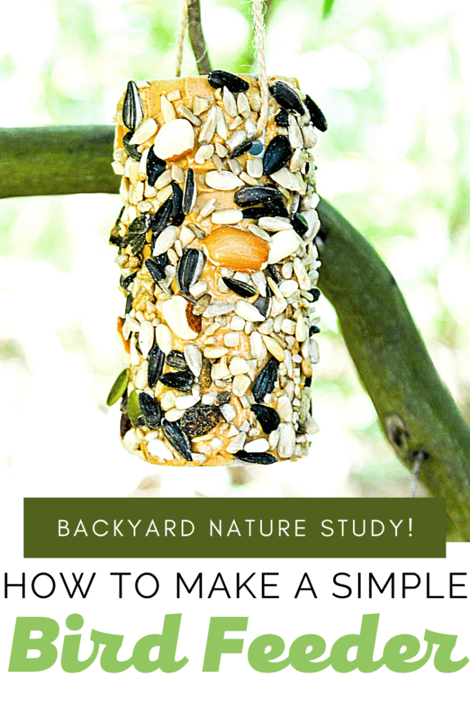 Entice the birds to visit your backyard when you hang this bird feeder preschool craft in a nearby tree. It's perfect for backyard nature study!