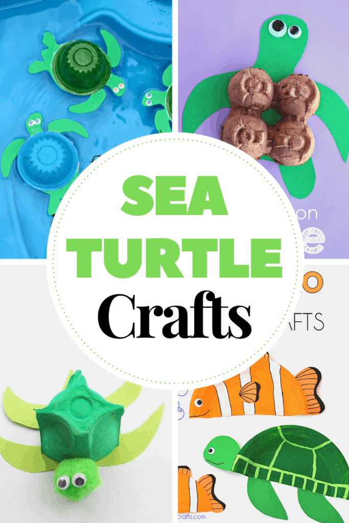 Sea turtle crafts are perfect for your summer and ocean-themed preschool lesson plans. You'll have a hard time choosing which one to make first!