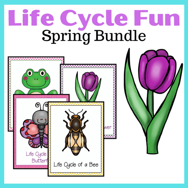 During the spring months, use this awesome collection of spring life cycle worksheets to teach your preschoolers about bees, butterflies, flowers, and frogs!