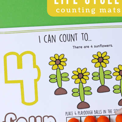 Sunflower Life Cycle Counting Mats