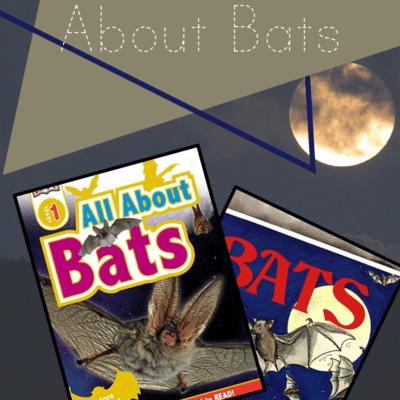 Nonfiction Books About Bats