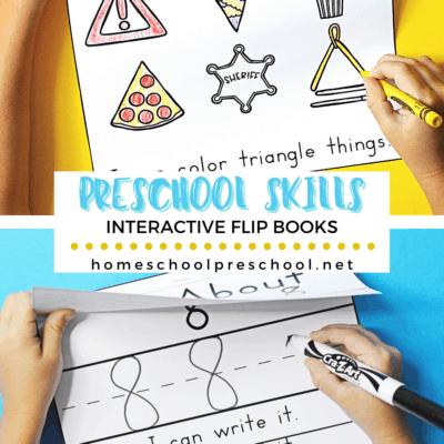 Preschool Basic Skills Flip Books