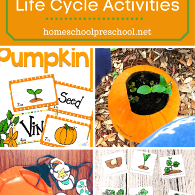 Pumpkin Life Cycle Preschool Activities