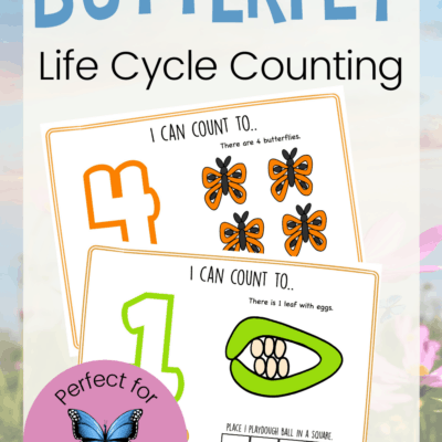 Life Cycle of a Butterfly Activity for Preschoolers