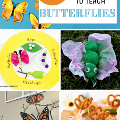 Butterfly Stem Activities